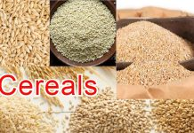 cereals name